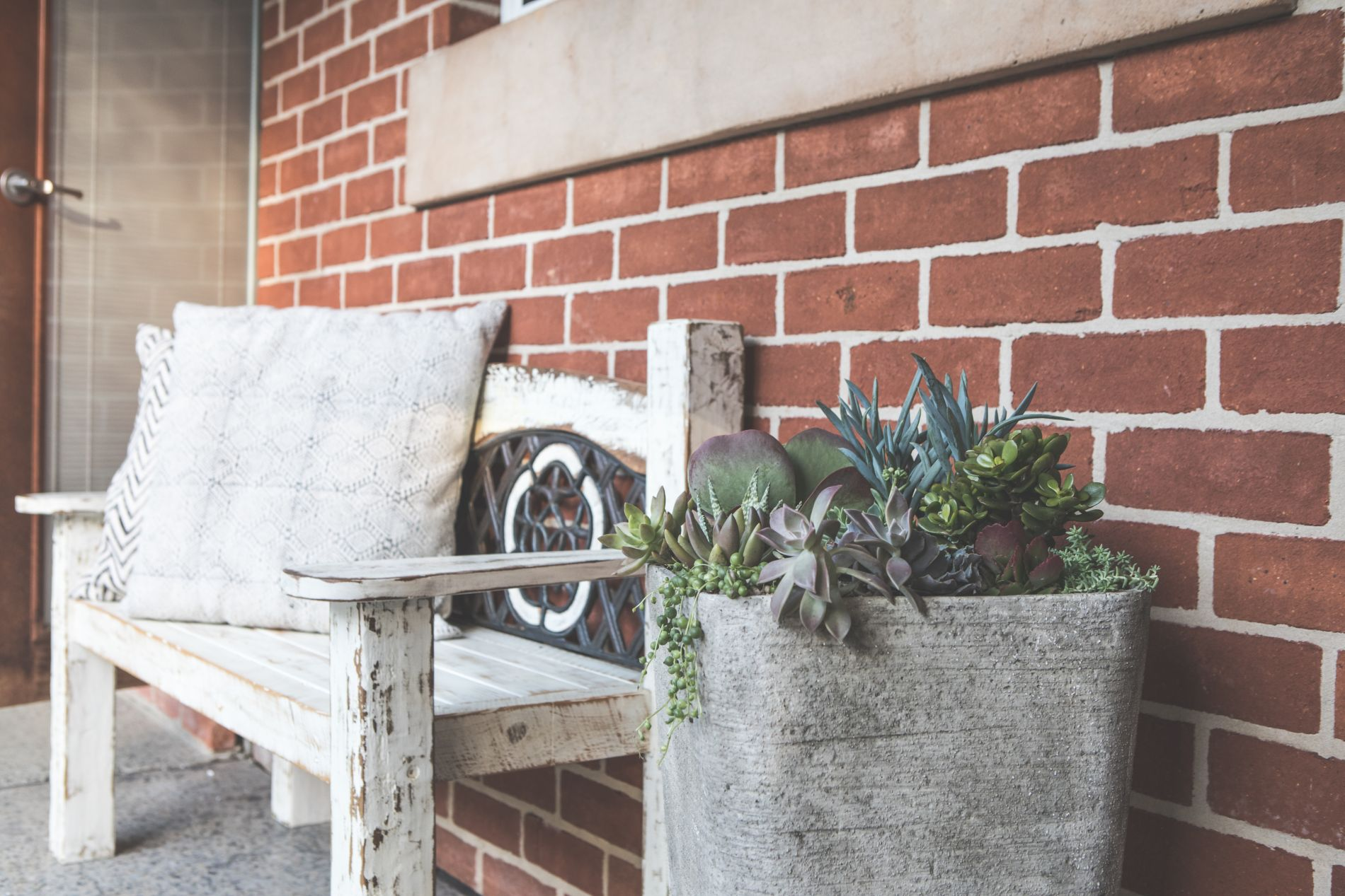 Succulent pot plant next to boho weathered bench against red brick wall